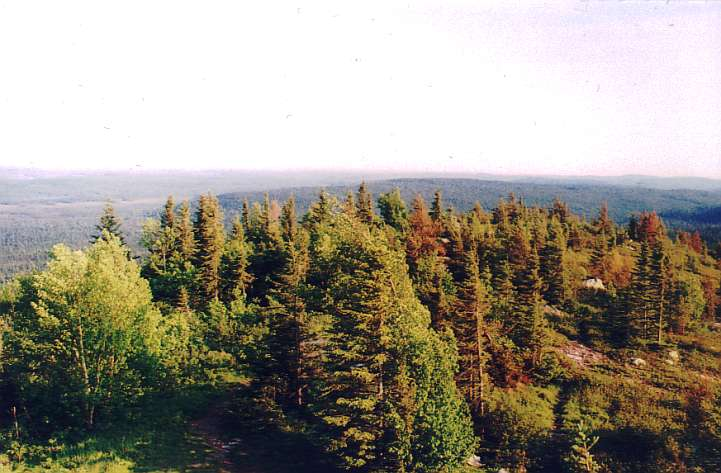 Maple mountain lookout south