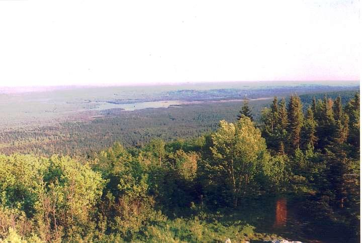 Maple mountain lookout SE